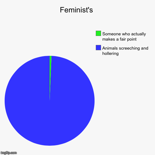 Feminist's | Animals screeching and hollering, Someone who actually makes a fair point | image tagged in funny,pie charts | made w/ Imgflip pie chart maker