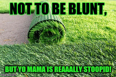 Yo Mama Blunters... | NOT TO BE BLUNT, BUT YO MAMA IS REAAALLY STOOPID! | image tagged in memes,yo mama,lol so funny,weed | made w/ Imgflip meme maker