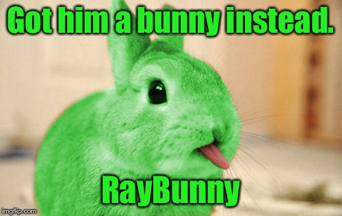 RayBunny | Got him a bunny instead. RayBunny | image tagged in raybunny | made w/ Imgflip meme maker