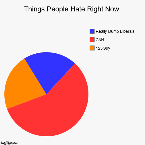Things People Hate Right Now | 123Guy, CNN, Really Dumb Liberals | image tagged in funny,pie charts | made w/ Imgflip chart maker