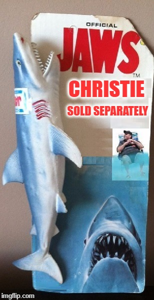 Sold Separately. | CHRISTIE SOLD SEPARATELY | image tagged in chris christie | made w/ Imgflip meme maker