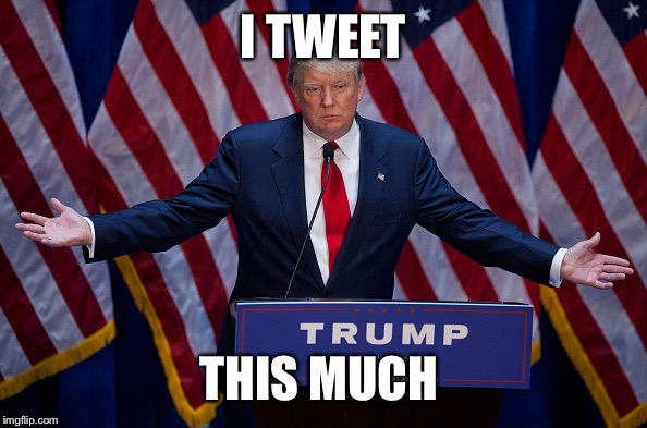 Donald Trump | I TWEET THIS MUCH | image tagged in donald trump | made w/ Imgflip meme maker