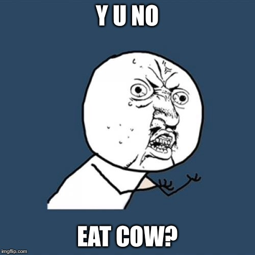 Y U No Meme | Y U NO EAT COW? | image tagged in memes,y u no | made w/ Imgflip meme maker