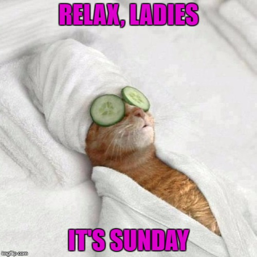 Image Tagged In Cat Spa Sunday Imgflip