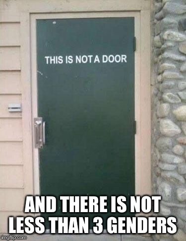Confused Door | AND THERE IS NOT LESS THAN 3 GENDERS | image tagged in confused door | made w/ Imgflip meme maker