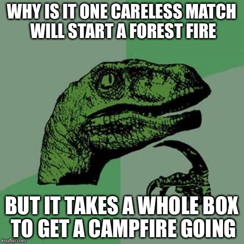 Philosoraptor Meme | WHY IS IT ONE CARELESS MATCH WILL START A FOREST FIRE BUT IT TAKES A WHOLE BOX TO GET A CAMPFIRE GOING | image tagged in memes,philosoraptor | made w/ Imgflip meme maker