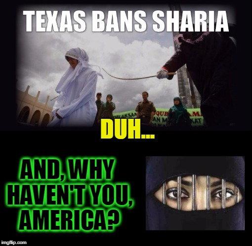 Fanaticism Vs Western Civilization... DUH! | DUH... AND, WHY HAVEN'T YOU, AMERICA? | image tagged in vince vance,sharia law,the constitution of the united states,one nation undivided,there can be only one,this is america | made w/ Imgflip meme maker