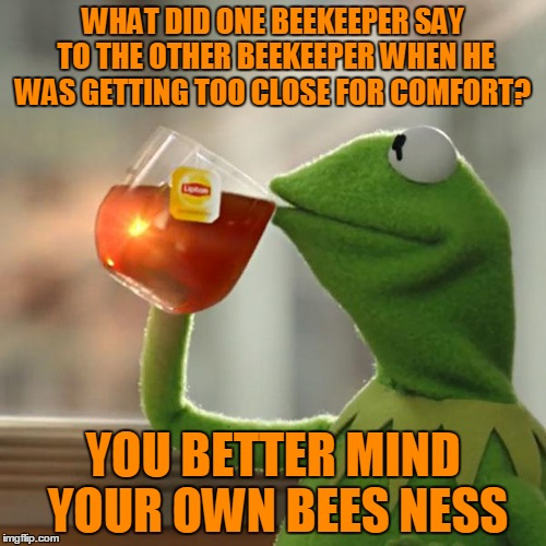 Kermit makes an un bee lievably bad pun | WHAT DID ONE BEEKEEPER SAY TO THE OTHER BEEKEEPER WHEN HE WAS GETTING TOO CLOSE FOR COMFORT? YOU BETTER MIND YOUR OWN BEES NESS | image tagged in memes,but thats none of my business,kermit the frog,beekeeper,bees,bee all you can bee | made w/ Imgflip meme maker
