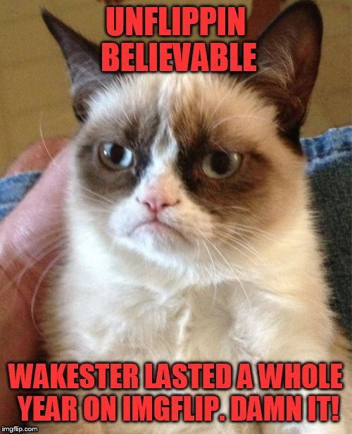 Back to where I left off | . | image tagged in grumpy cat,one year anniversary | made w/ Imgflip meme maker