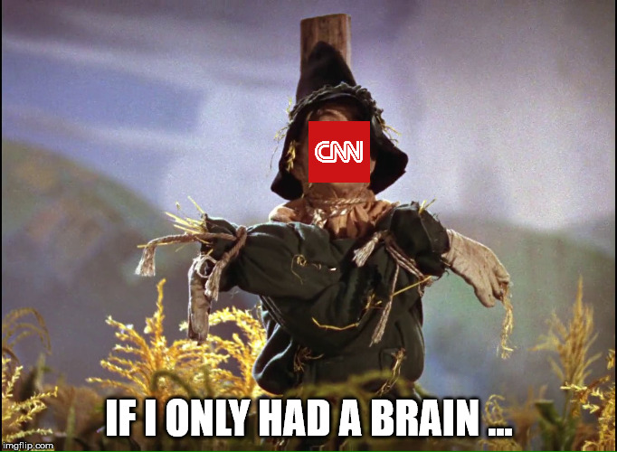 Declares war on the Internet... | IF I ONLY HAD A BRAIN ... | image tagged in wizard of oz scarecrow which way,cnn,cnn sucks,cnn blackmail,cnnblackmail | made w/ Imgflip meme maker