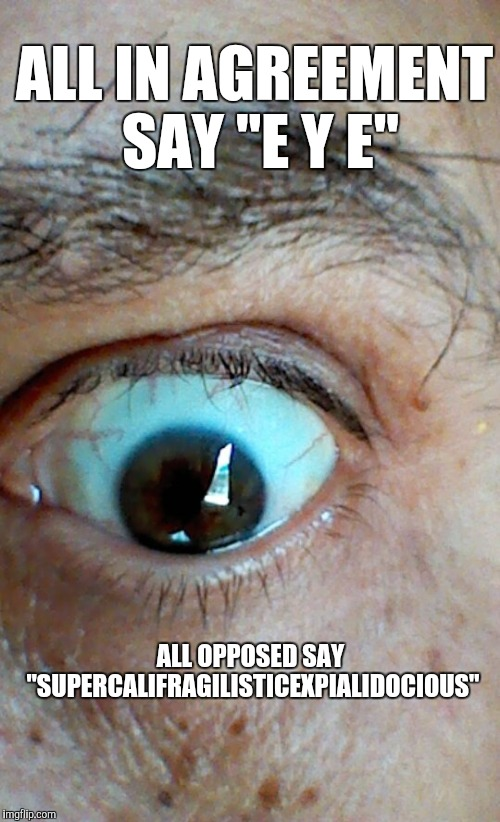 "Memes, eyes | ALL IN AGREEMENT SAY ""E Y E"" ALL OPPOSED SAY ""SUPERCALIFRAGILISTICEXPIALIDOCIOUS"" 