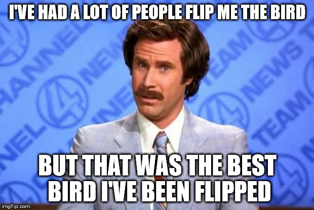 I'VE HAD A LOT OF PEOPLE FLIP ME THE BIRD BUT THAT WAS THE BEST BIRD I'VE BEEN FLIPPED | made w/ Imgflip meme maker