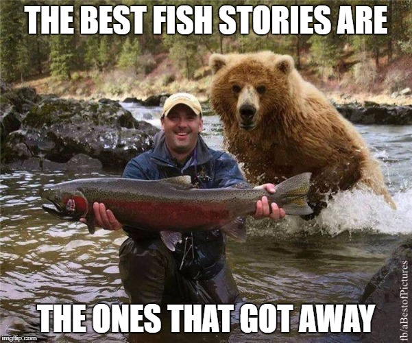 Fishing | THE BEST FISH STORIES ARE THE ONES THAT GOT AWAY | image tagged in fishing | made w/ Imgflip meme maker