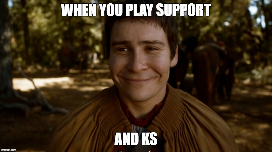 MOBA Support |  WHEN YOU PLAY SUPPORT; AND KS | image tagged in dota 2,dota,dota2,lol,league of legends,heroes of the storm | made w/ Imgflip meme maker