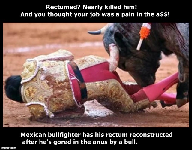 Rectumed? Nearly killed him! | image tagged in bullfighter,osha,workers compensation | made w/ Imgflip meme maker