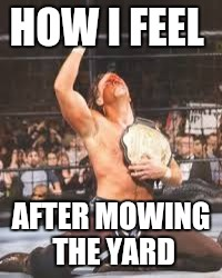 Me vs. Yardwork | HOW I FEEL AFTER MOWING THE YARD | image tagged in wins title,wwe,work,chores,hbk,funny memes | made w/ Imgflip meme maker