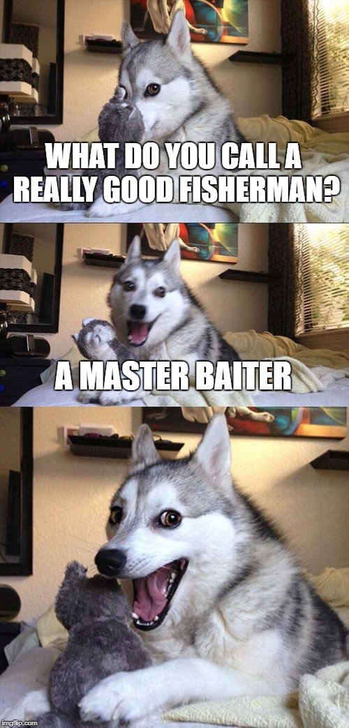Tee Hee | WHAT DO YOU CALL A REALLY GOOD FISHERMAN? A MASTER BAITER | image tagged in memes,bad pun dog | made w/ Imgflip meme maker