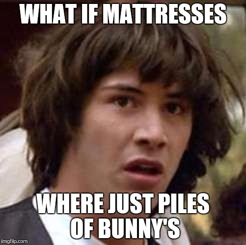 Conspiracy Keanu Meme | WHAT IF MATTRESSES WHERE JUST PILES OF BUNNY'S | image tagged in memes,conspiracy keanu | made w/ Imgflip meme maker