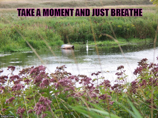 TAKE A MOMENT AND JUST BREATHE | image tagged in st mary's ontario | made w/ Imgflip meme maker