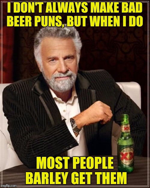 The Most Interesting Man In The World Meme | I DON'T ALWAYS MAKE BAD BEER PUNS, BUT WHEN I DO MOST PEOPLE BARLEY GET THEM | image tagged in memes,the most interesting man in the world | made w/ Imgflip meme maker