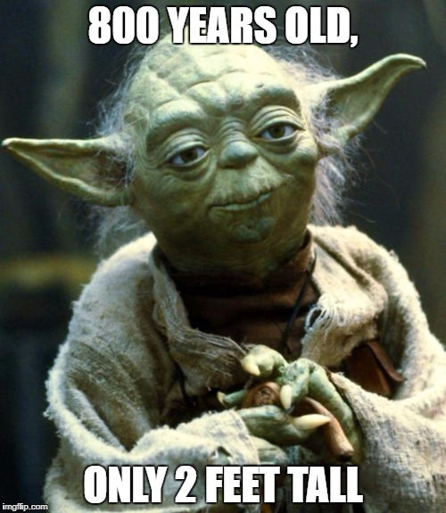 Star Wars Yoda | 800 YEARS OLD, ONLY 2 FEET TALL | image tagged in memes,star wars yoda | made w/ Imgflip meme maker