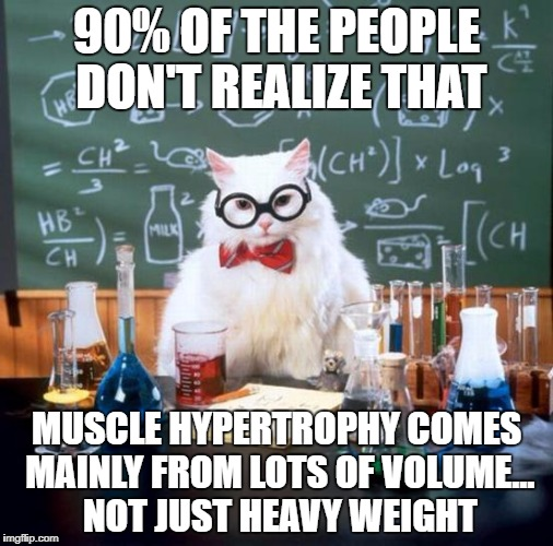 Chemistry Cat Meme | 90% OF THE PEOPLE DON'T REALIZE THAT MUSCLE HYPERTROPHY COMES MAINLY FROM LOTS OF VOLUME... NOT JUST HEAVY WEIGHT | image tagged in memes,chemistry cat | made w/ Imgflip meme maker