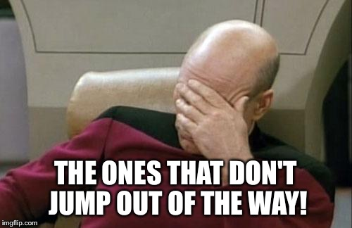 Captain Picard Facepalm Meme | THE ONES THAT DON'T JUMP OUT OF THE WAY! | image tagged in memes,captain picard facepalm | made w/ Imgflip meme maker