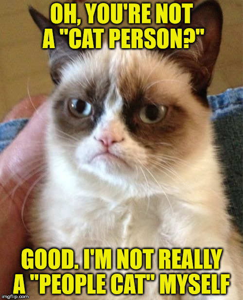 "Basically every cat ever | OH, YOU'RE NOT A ""CAT PERSON?"" GOOD. I'M NOT REALLY A ""PEOPLE CAT"" MYSELF 