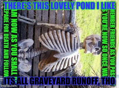 THERE'S THIS LOVELY POND I LIKE ITS ALL GRAVEYARD RUNOFF, THO | made w/ Imgflip meme maker