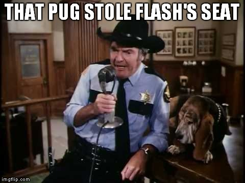 THAT PUG STOLE FLASH'S SEAT | made w/ Imgflip meme maker