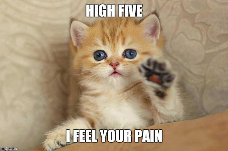 HIGH FIVE I FEEL YOUR PAIN | made w/ Imgflip meme maker