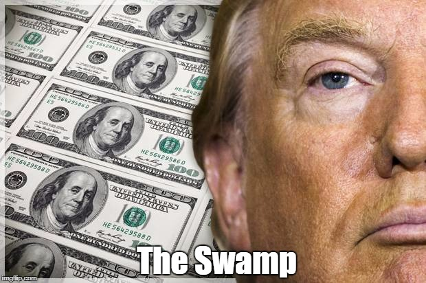 """The Swamp"" 