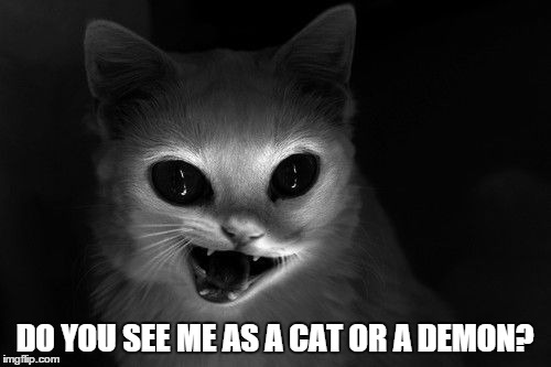 DO YOU SEE ME AS A CAT OR A DEMON? | made w/ Imgflip meme maker