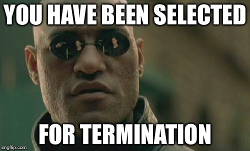Matrix Morpheus Meme | YOU HAVE BEEN SELECTED FOR TERMINATION | image tagged in memes,matrix morpheus | made w/ Imgflip meme maker