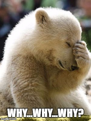 Facepalm Bear |  WHY...WHY...WHY? | image tagged in memes,facepalm bear | made w/ Imgflip meme maker