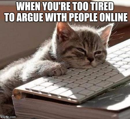 Too Tired | WHEN YOU'RE TOO TIRED TO ARGUE WITH PEOPLE ONLINE | image tagged in tired cat | made w/ Imgflip meme maker