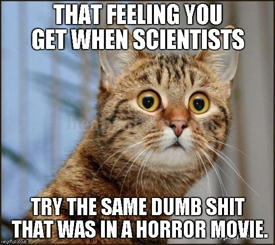 Bad Sci-fi | THAT FEELING YOU GET WHEN SCIENTISTS TRY THE SAME DUMB SHIT THAT WAS IN A HORROR MOVIE. | image tagged in robopocalypse,kill all humans | made w/ Imgflip meme maker