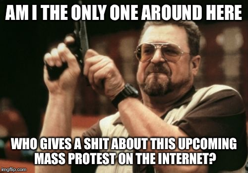 Am I The Only One Around Here Meme | AM I THE ONLY ONE AROUND HERE WHO GIVES A SHIT ABOUT THIS UPCOMING MASS PROTEST ON THE INTERNET? | image tagged in memes,am i the only one around here | made w/ Imgflip meme maker