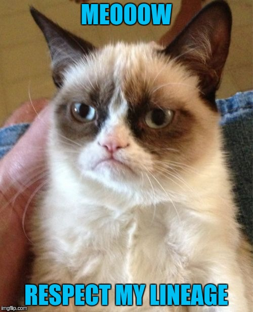 Grumpy Cat Meme | MEOOOW RESPECT MY LINEAGE | image tagged in memes,grumpy cat | made w/ Imgflip meme maker