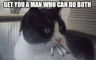 Cats Like Cigarettes