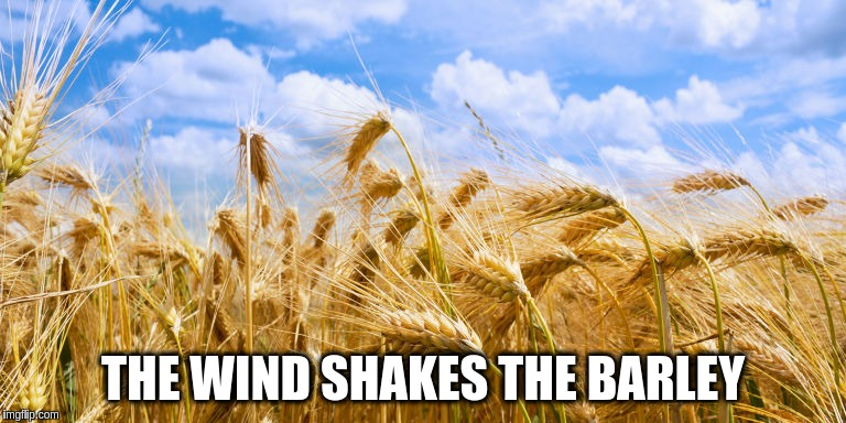 THE WIND SHAKES THE BARLEY | made w/ Imgflip meme maker