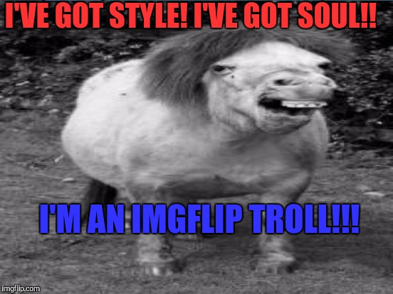 Not just horsin' around. It's the ugly truth. Sarcastically rendered. | I'VE GOT STYLE! I'VE GOT SOUL!! I'M AN IMGFLIP TROLL!!! | image tagged in funny,memes,animals,humor,trolls,horses | made w/ Imgflip meme maker