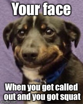 Dog | Your face When you get called out and you got squat | image tagged in memes | made w/ Imgflip meme maker