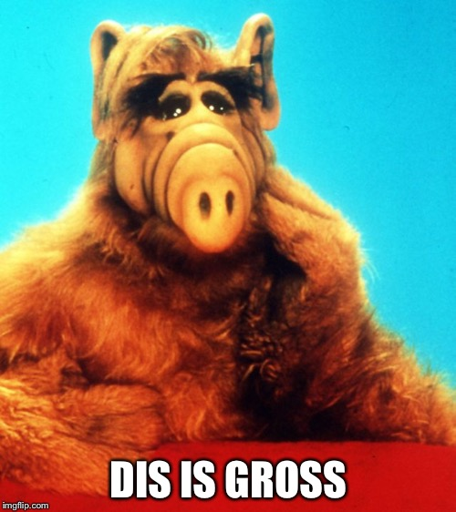Gordon  | DIS IS GROSS | image tagged in alf the alien | made w/ Imgflip meme maker