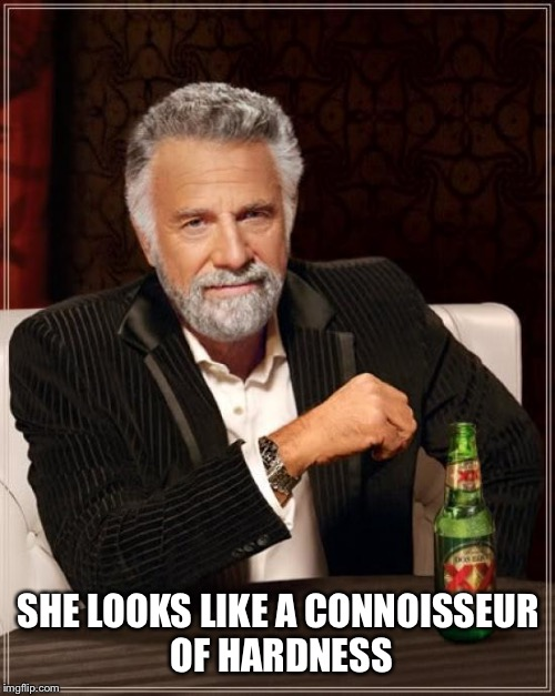 The Most Interesting Man In The World Meme | SHE LOOKS LIKE A CONNOISSEUR OF HARDNESS | image tagged in memes,the most interesting man in the world | made w/ Imgflip meme maker