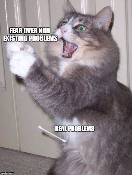 21st century | FEAR OVER NON EXISTING PROBLEMS REAL PROBLEMS | image tagged in problems,anxiety cat,fear,existence | made w/ Imgflip meme maker