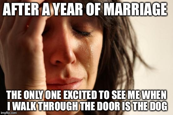 First World Problems Meme | AFTER A YEAR OF MARRIAGE THE ONLY ONE EXCITED TO SEE ME WHEN I WALK THROUGH THE DOOR IS THE DOG | image tagged in memes,first world problems | made w/ Imgflip meme maker