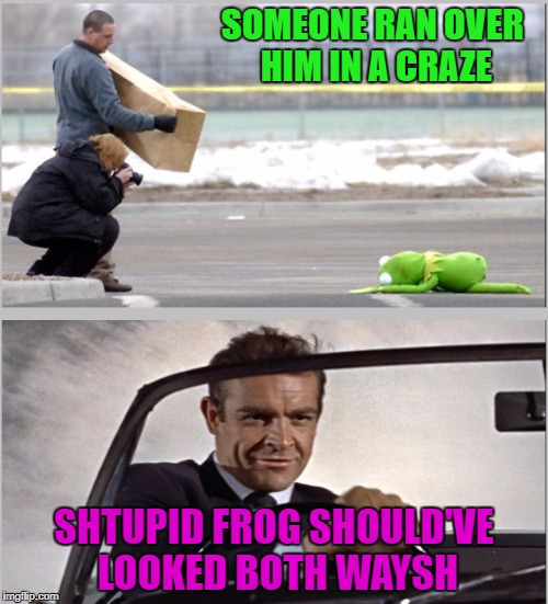 The battle rages on!!! And yeah...yeah...I'm still rhyming!!! | SOMEONE RAN OVER HIM IN A CRAZE SHTUPID FROG SHOULD'VE LOOKED BOTH WAYSH | image tagged in kermit vs sean,memes,kermit the frog,funny,sean connery,the battle wages on | made w/ Imgflip meme maker