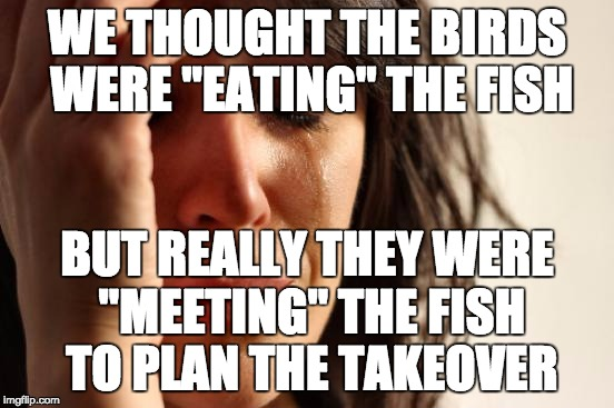 "First World Problems Meme | WE THOUGHT THE BIRDS WERE ""EATING"" THE FISH BUT REALLY THEY WERE ""MEETING"" THE FISH TO PLAN THE TAKEOVER 