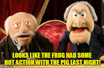 LOOKS LIKE THE FROG HAD SOME HOT ACTION WITH THE PIG LAST NIGHT! | made w/ Imgflip meme maker